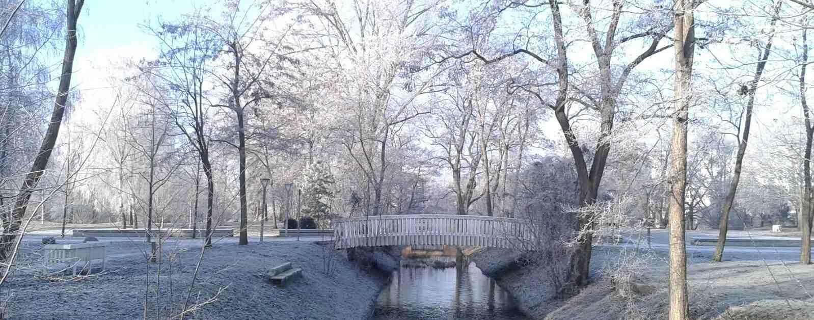 Die KlimaWerkstatt wünscht allen eine schöne Weihnachtszeit und gutes Neues Jahr