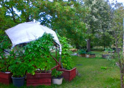 Gärten verwurzeln im Falkenhagener Feld
